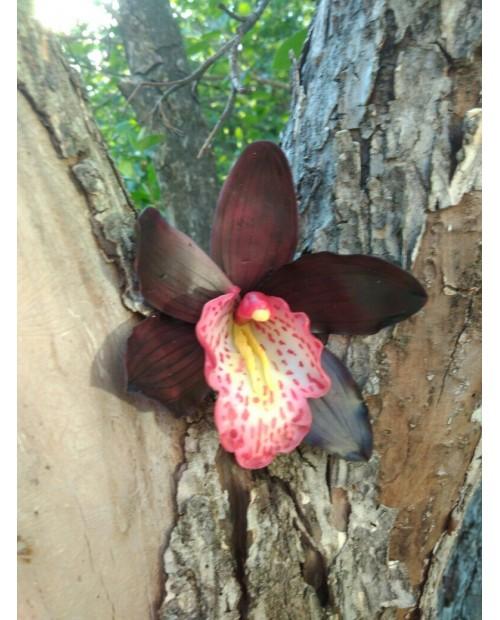 """Заколка-брошь """"Орхидея"""""""